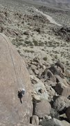 Rock Climbing Photo: Tom Lunga on H.M