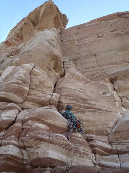 Rock Climbing Photo: Getting into the business in the Dr. Suess-like bu...
