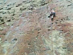 Rock Climbing Photo: Zebra Direct