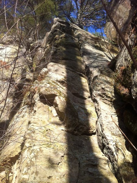 Pitch 1 crack goes to the ledge with the big tree. Belay at tree.