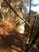 Rock Climbing Photo: Start of the route is just past the fallen tree, c...