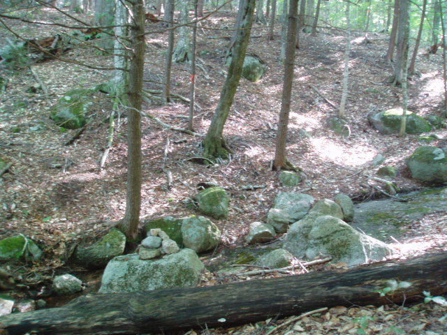 Cairn at stream crossing. Path goes pretty much straight up the middle of the photo. (Note tape on tree)