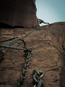 Rock Climbing Photo: Night Crawler