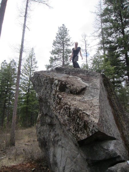 "The overhanging concave wave that characterizes the ""beguiled boulder"". Access is 1 mile off of hwy 95 on giles connection road (across from elk farm aprox.mile 519.5)."