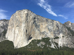 View of El Cap from the base of the first pitch. Worth the stroll up even if you're not doing the climb.