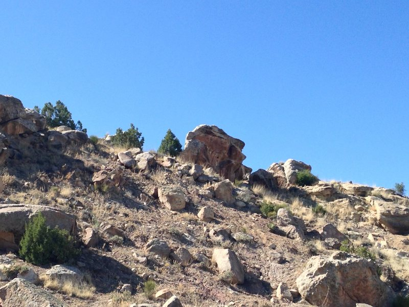 Rock Climbing Photo: View of Toe Jam Boulder from the trail.
