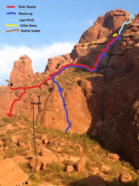 Rock Climbing Photo: Watch out for the Bees! If you're going anywhere n...