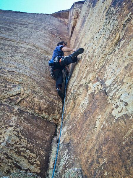 Rock Climbing Photo: Matt on Cole Essence