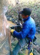 Rock Climbing Photo: James drilling a new bolt on Child Abuse.