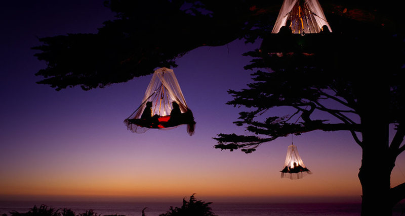 Tree camping example
