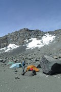 Rock Climbing Photo: Crater Camp (very high) with the summit behind