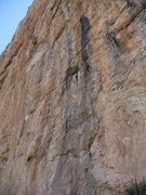 Rock Climbing Photo: Kay high up at Oasis