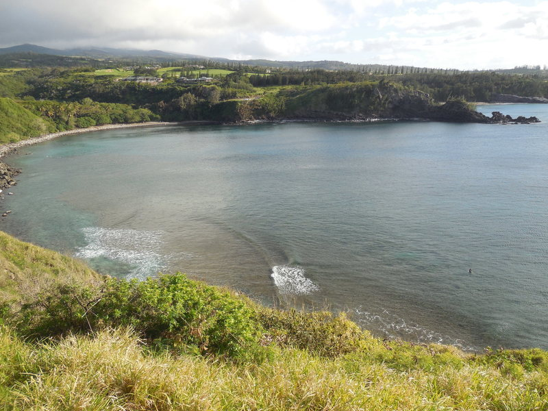 Honolua Bay from Lipoa Point Overlook.