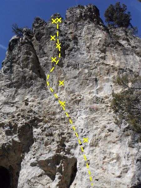 Advanced Dynamics<br> Best climb on the wall