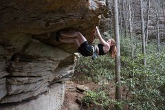 Rock Climbing Photo: Climbing a roof in Muir Valley, at the Red River G...