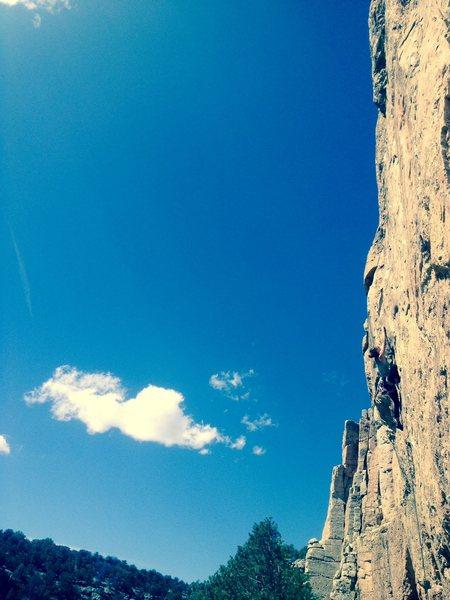 Rock Climbing Photo: 11.C, Leisure Class at Cactus Cliff