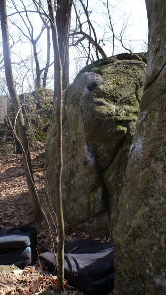 Small boulder past the tree.