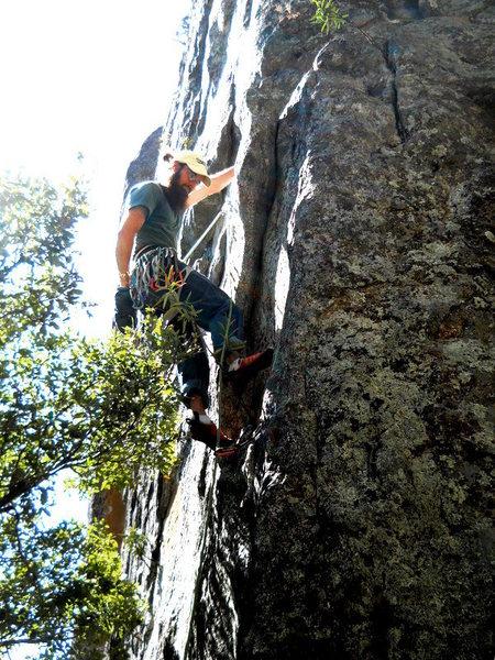 Rock Climbing Photo: Chester the Molester