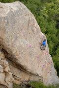 Rock Climbing Photo: Fiemann - purple Great Race - red