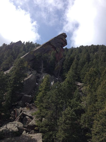 Rock Climbing Photo: Will B from The Thing.  If you walk over to the Wi...