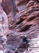 Canyoneering in Pine Creek, Zion