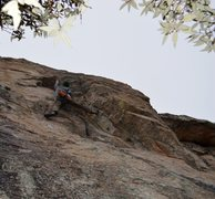 Rock Climbing Photo: Mike on 'Look No More'.