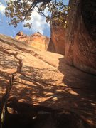 Rock Climbing Photo: A view up 3 of the Pincrest Buttress' classic rout...