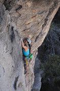 Rock Climbing Photo: Rita Shin enjoying a great day in Josh.  Photo by ...