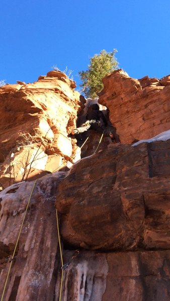 Dan Z. and the top of the slot. That's the rap tree.<br> <br> In our mind, a defining characteristic of a quality mixed climb is one in which there is significantly more rock gear than ice gear, perhaps 75/25, and perhaps a smattering of snow.