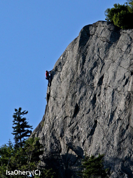 Rock Climbing Photo: Off width 5.6 Deer Leap killington VT