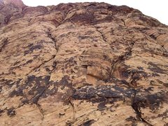 Rock Climbing Photo: Looking up pitch 8 from the belay.