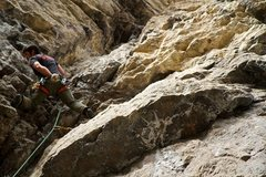 Rock Climbing Photo: Callalo 5.11a, Logan UT