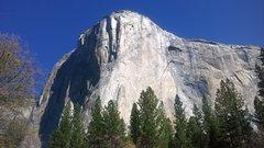 Rock Climbing Photo: El cap