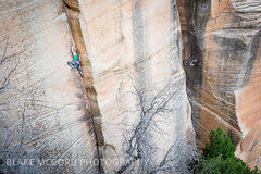 Rock Climbing Photo: Anne Mariah Tapp on the Second Ascent of the Golde...