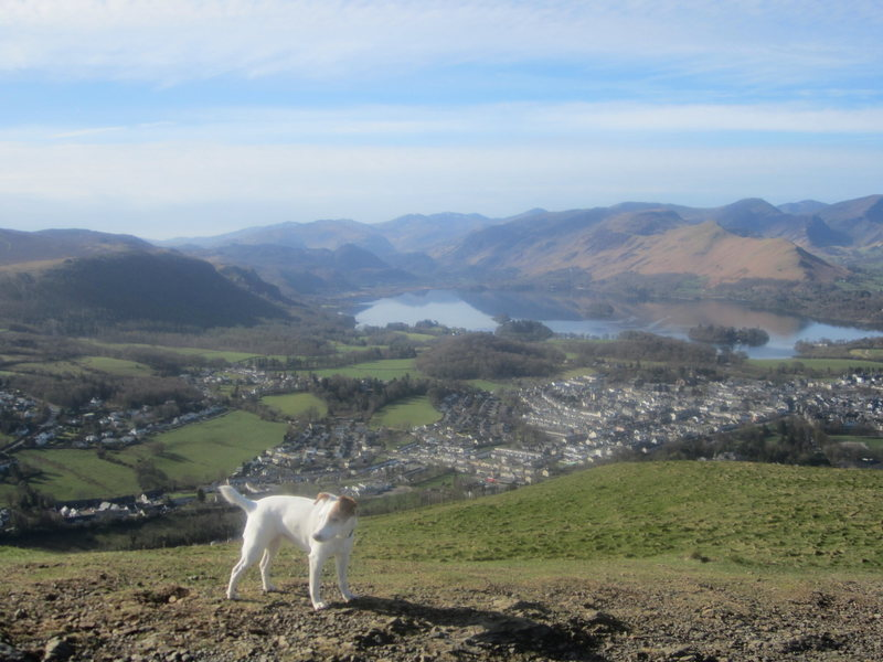 Town of Keswick from Latrigg