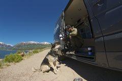 Rock Climbing Photo: Van & Dog
