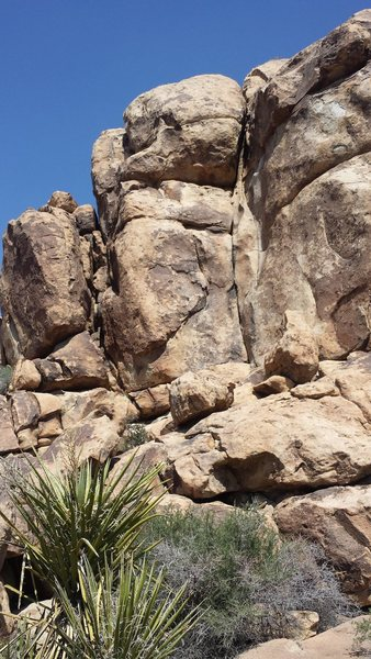 Rock Climbing Photo: Follow the obvious dihedral.