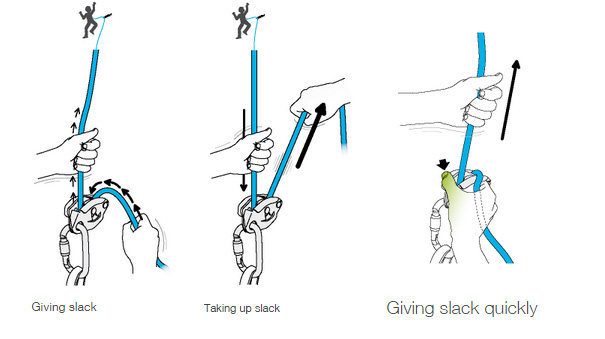 Petzl recommended belay method