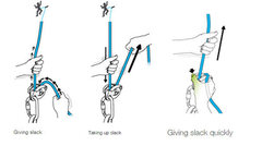 Rock Climbing Photo: Petzl recommended belay method