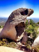 Rock Climbing Photo: It does exist!