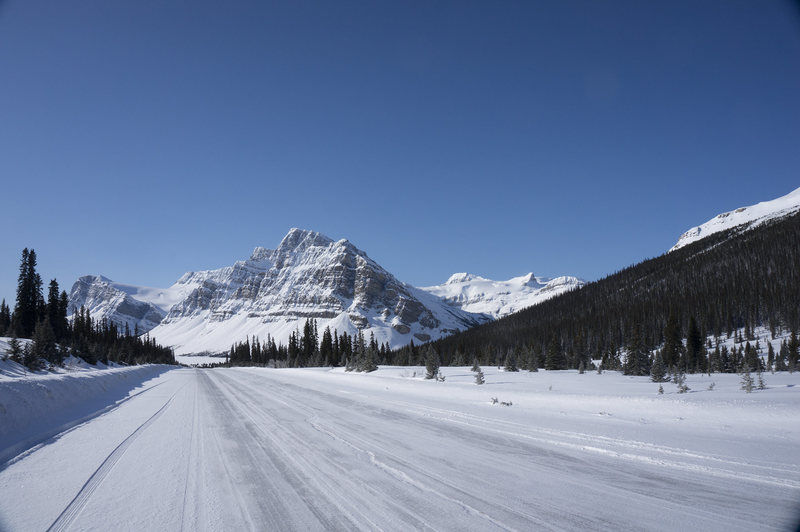 Looking south on the parkway, at around Bow Lake.