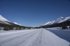 Rock Climbing Photo: Looking north on Icefields Parkway around Bow Lake...
