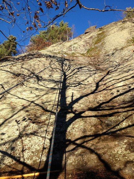 Rock Climbing Photo: Pintade disco