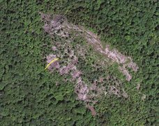 Rock Climbing Photo: Sky View of Coney Mtn. compliments of Bing Maps. Y...