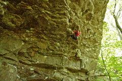 Rock Climbing Photo: Silverback