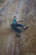 Rock Climbing Photo: Cookie Monster