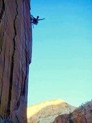 Rock Climbing Photo: Classic Zion!!