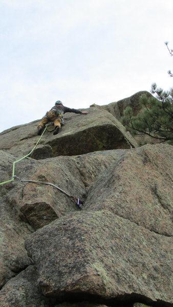Rock Climbing Photo: One No-Trump.