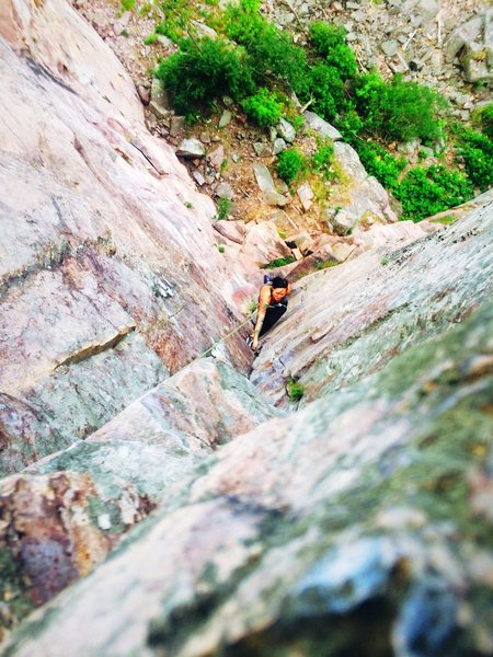 Rock Climbing Photo: Blue bells