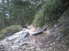 Rock Climbing Photo: Looking back down the crags trail from the base of...